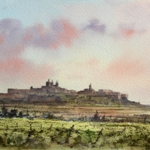View of Mdina across the vineyards