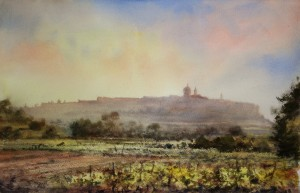Vineyards below Mdina  in spring  - Malta